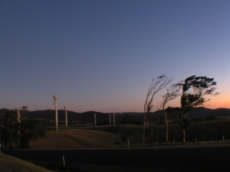 The shape of the trees on top of the Wind Mill Hill, in Tropical North Queensland.