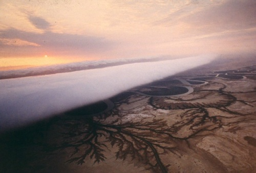 The spectacular Morning Glory cloud formation rolling in from the Gulf of Carpentaria over the tidal flats of Burketown. Click to read more about this fascinating phenomenon.