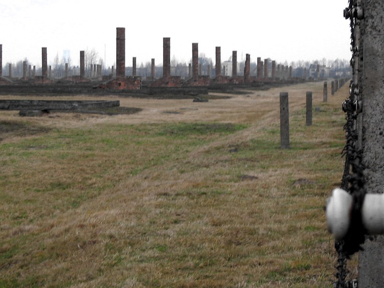 the eerie chimneys of Birkenau, all that remains of many of the wooden cell blocks.
