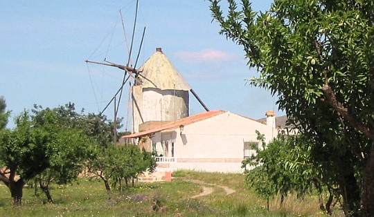 An old windmill, or as we Spanish call it 'molino'.