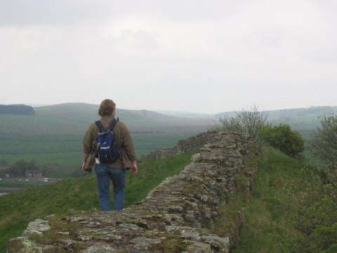 4. Green pastures. Stone wall.