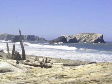 Oregon coastline south of Bandon at Battle Rock.