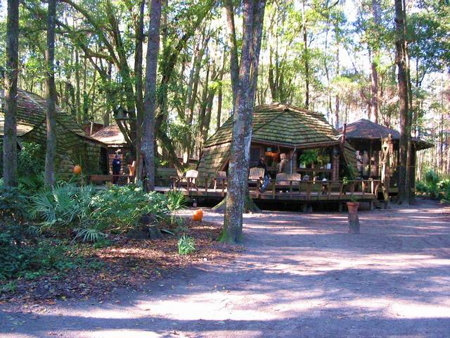 Hostel in the Forest.